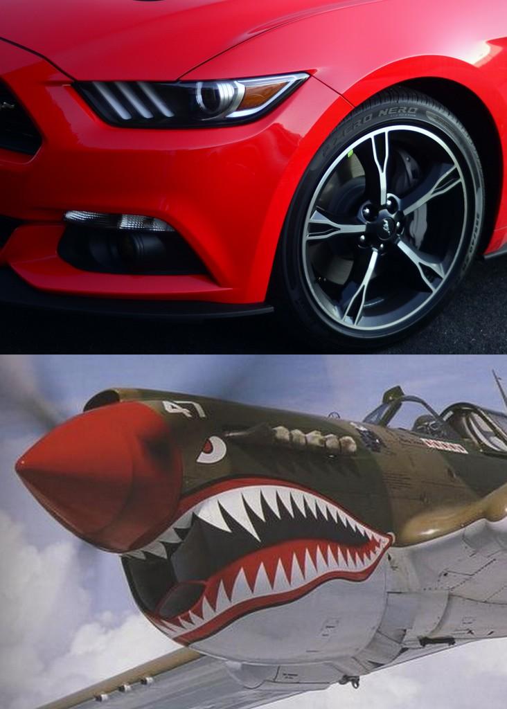 Shark_Mustang